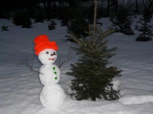 Snowman.tree.P1000345