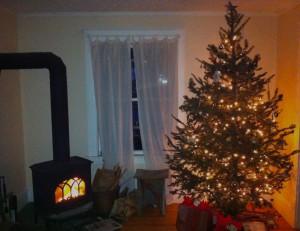 Nate & Emily's Christmas tree